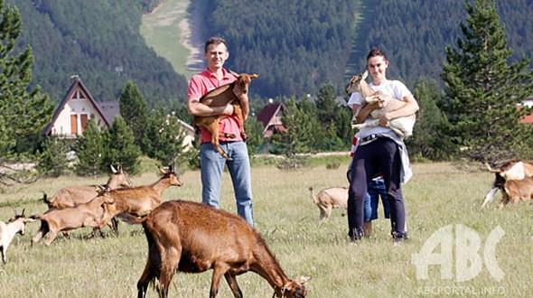 farma-koza-risovac-07121116