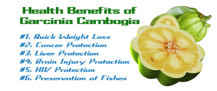 benefits-of-garcinia.jpg?resize=750%2C31