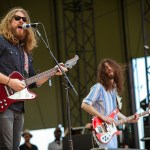 Sheepdogs by Chris Nelson