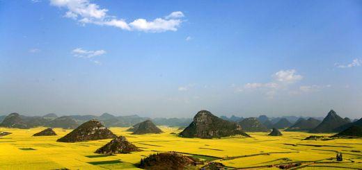Luoping: donde la primavera se viste de oro 4