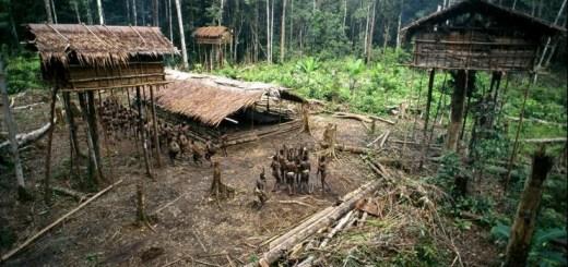 La tribu perdida de los Korowai 1