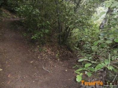 Monte Aguirre, cruce de senderos