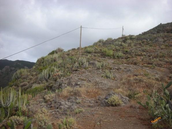 Llegada al sendero dirección Igueste cuando subes de Playa de Antequera