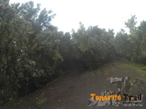 Imagen de Cuatro Caminos (Zona de Pico del Inglés)