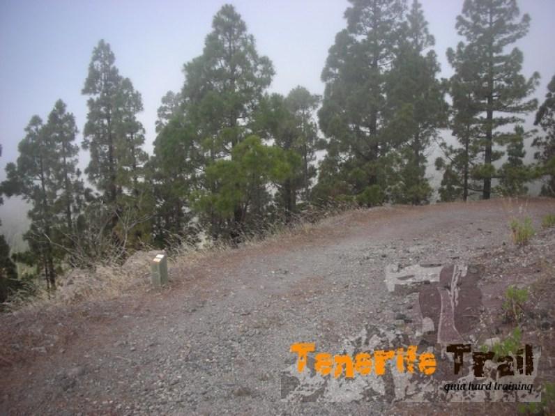 Pista por encima de Santiago del Teide