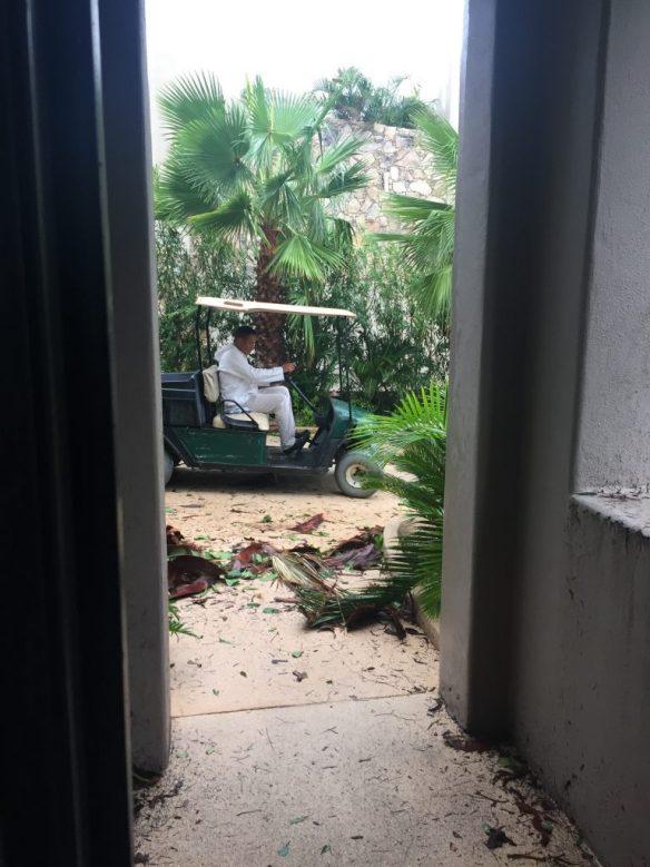 Hurricane Newton clean up begins