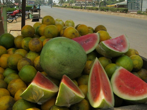 Make money from growing watermelon