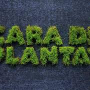 Logo verdure
