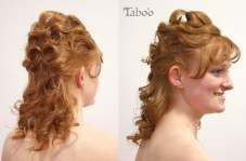 updo hair style photo