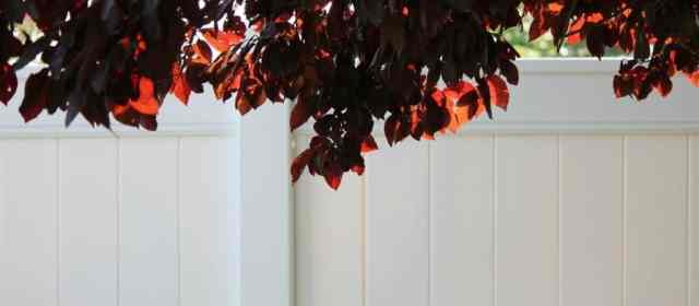6 reasons why you require a vinyl fence
