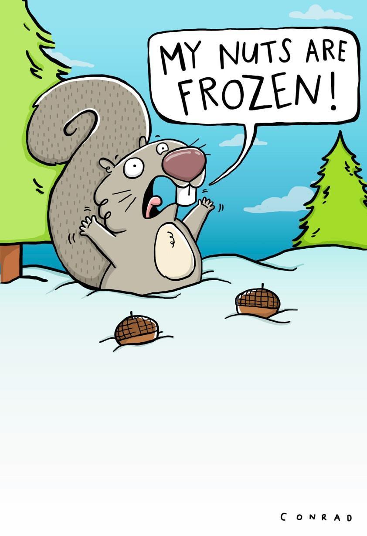 Fullsize Of Funny Christmas Cards