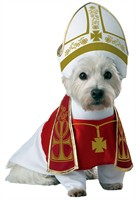 Animal Planet Holy Hound Dog Costume - Medium