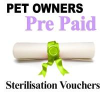 Pet Owners Sterilisation vouchers for Cats
