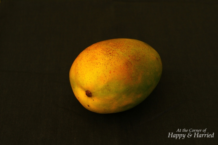 Easy Dessert - Mango Pudding: Two Ways