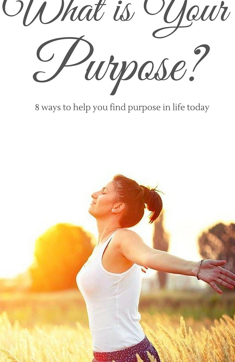What is my purpose today?
