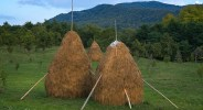 Three Romanian Haystacks