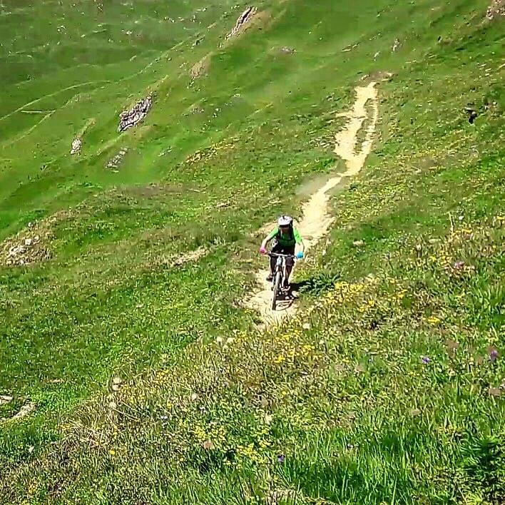 Trail Wallis 2 Reifen