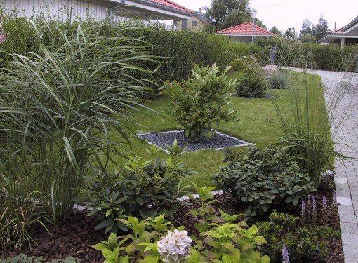 Skab læ og hygge med planter