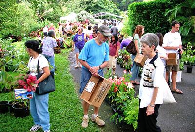 lyon-arboretum-plant-sale