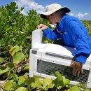 Biologist Sheila Conant wins national conservation award