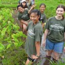 Summer AgDiscovery program for teens accepting applications