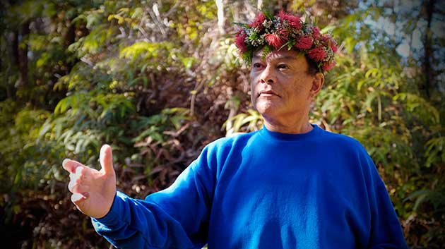 Campaign to conserve ʻōhiʻa trees finds roots in community