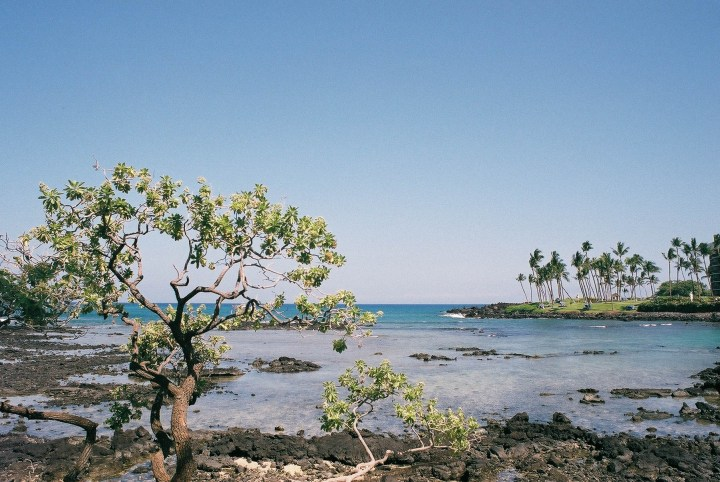 6Undisclosed Beach on Big Island