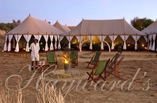 Haywards Tented Safaris