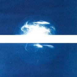 Cyanotype_Artemisia – 2014 – 50x70cm