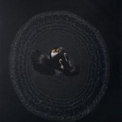 langage des oiseaux vallée de l'annihilation 2013 huile sur toile 200x 140