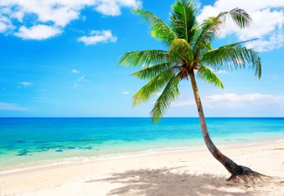 Tropical Beach Wallpapers, Pictures, Images