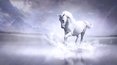 White Horse Wallpapers | HD Wallpapers | ID #13896