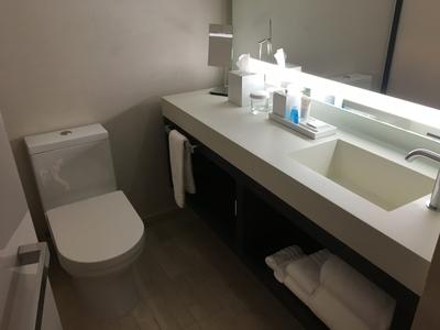 Conrad New York review bathroom