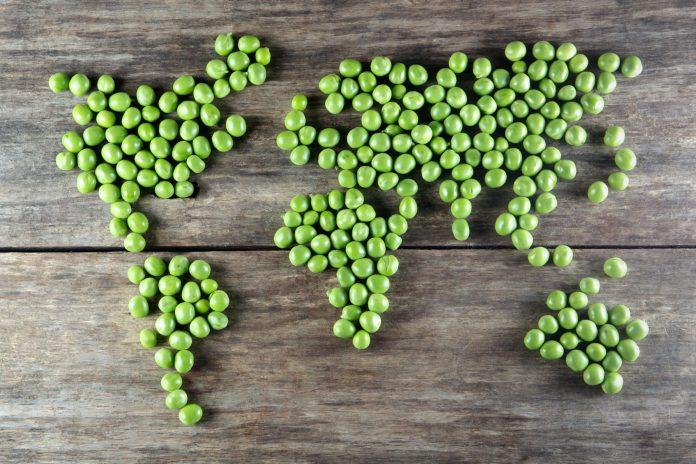 Top 10 Healthiest World Cuisines