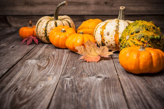 health benefits of gourds and pumpkins