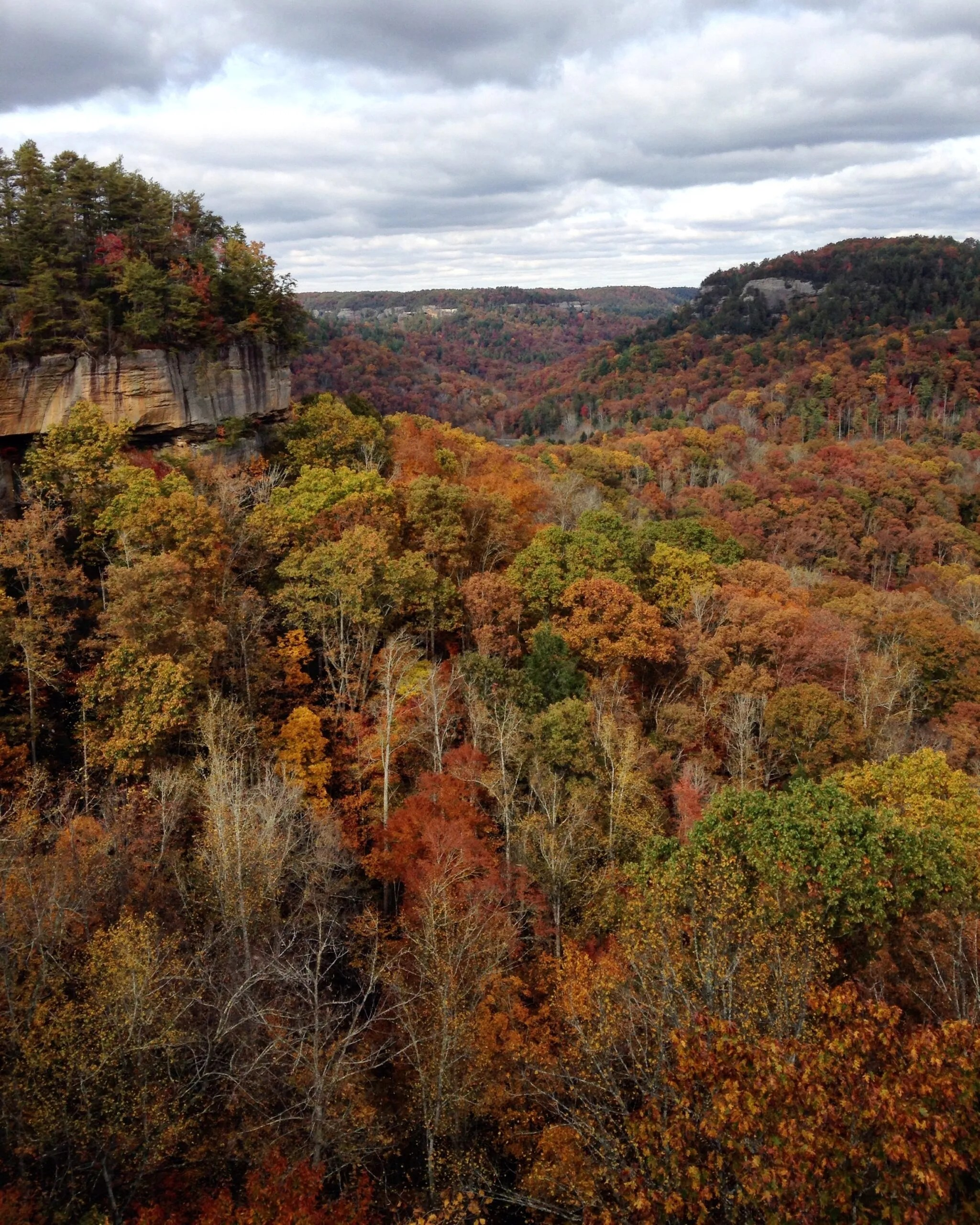 Red River Gorge, KY