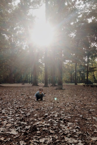 #LiveBoldly Day 26: The Dog Park with a Toddler + 2 Labs