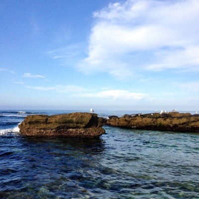 San Diego: A Trip to Remember, Part 4
