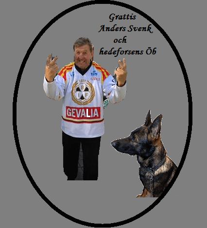 Hedeforsens ÖB och Anders Svensk