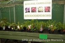 Garden Nurseries in Glenrothes