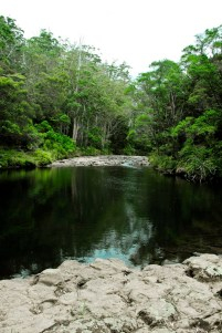 fairy pools in kerikeri
