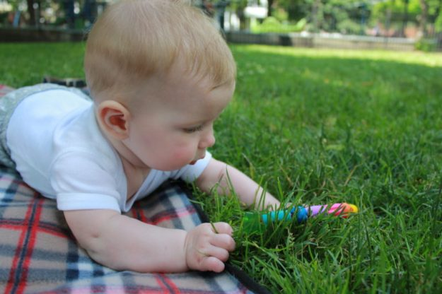 playing with grass