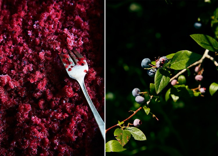 Hello My Dumpling | Berry Hibiscus Granita