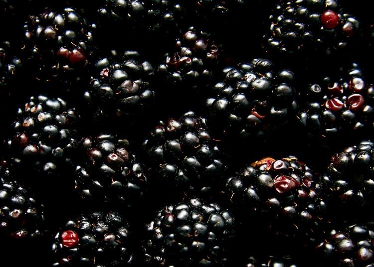 Hello My Dumpling | Spicy Basil Blackberry Preserve