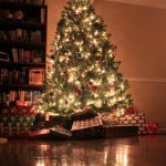 Vancouver Christmas tree recycling and chipping – January 2013