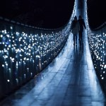 Canyon Lights at Capilano Suspension Bridge Park – November 29, 2014 – January 3, 2015
