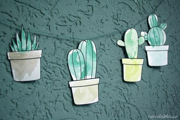 detail slinger cactus hemelsblauw