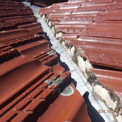 remedial-project-defective roofing work (14)