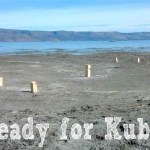 DIY kubb set feature