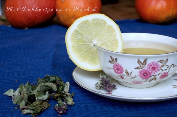 Foto: kopje groene thee